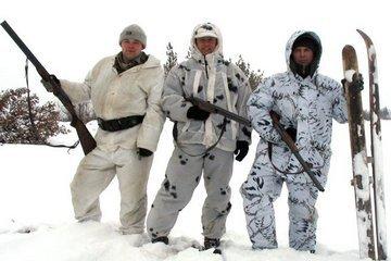 Разновидности зимнего камуфляжа